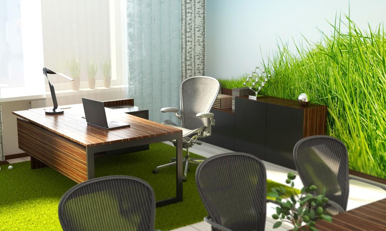 Зелень в офисе