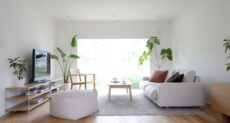 Растения в интерьере гостиной в стиле минимализм