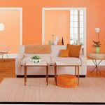 Home-Decorating-Ideas-Organizing-Tips-orange-wall-paint-colors
