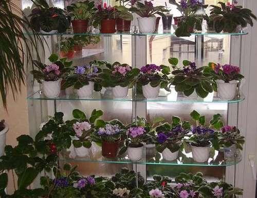 Полки для цветов на подоконник