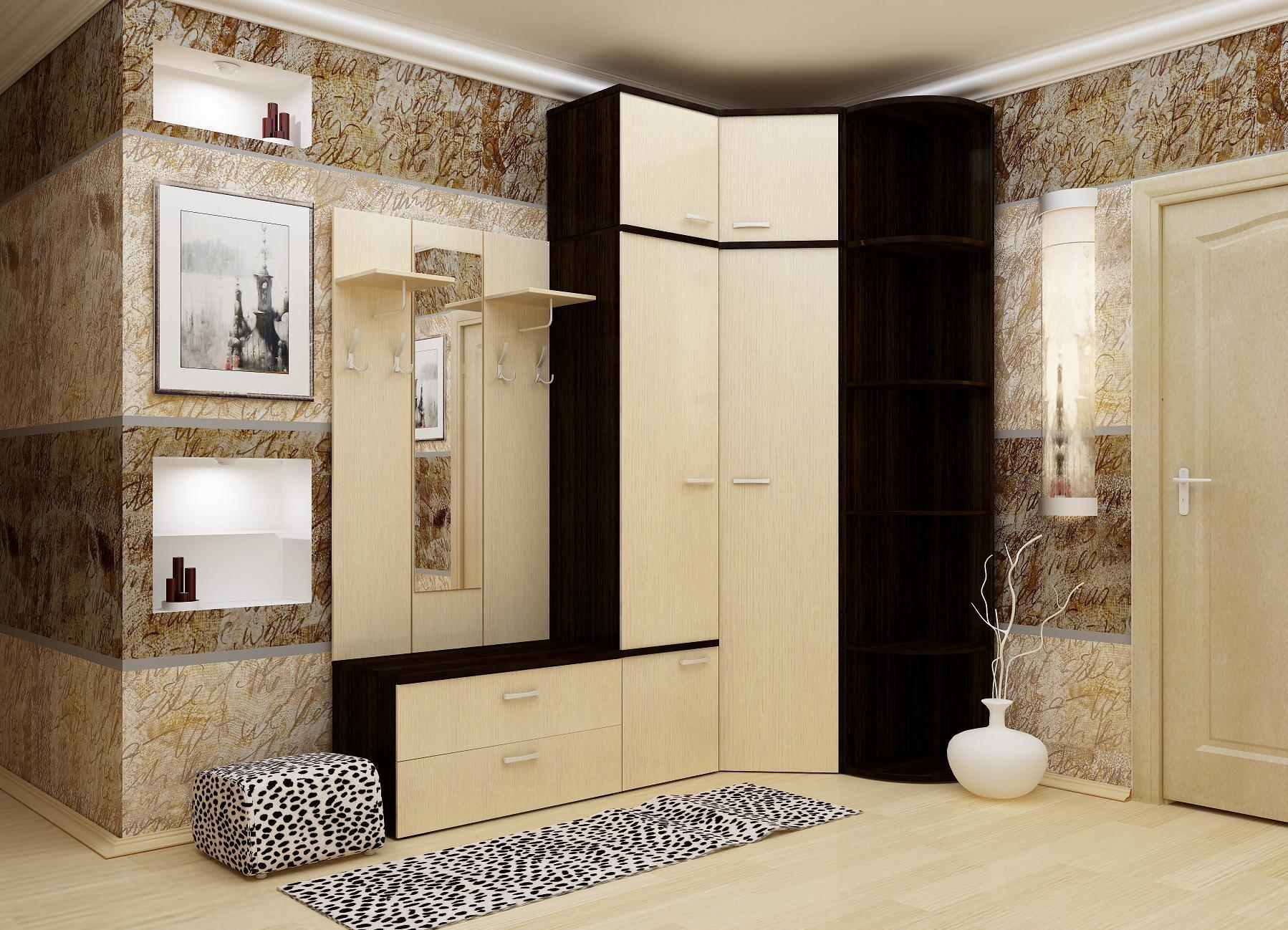 функциональный интерьер прихожей комнаты с узким коридором