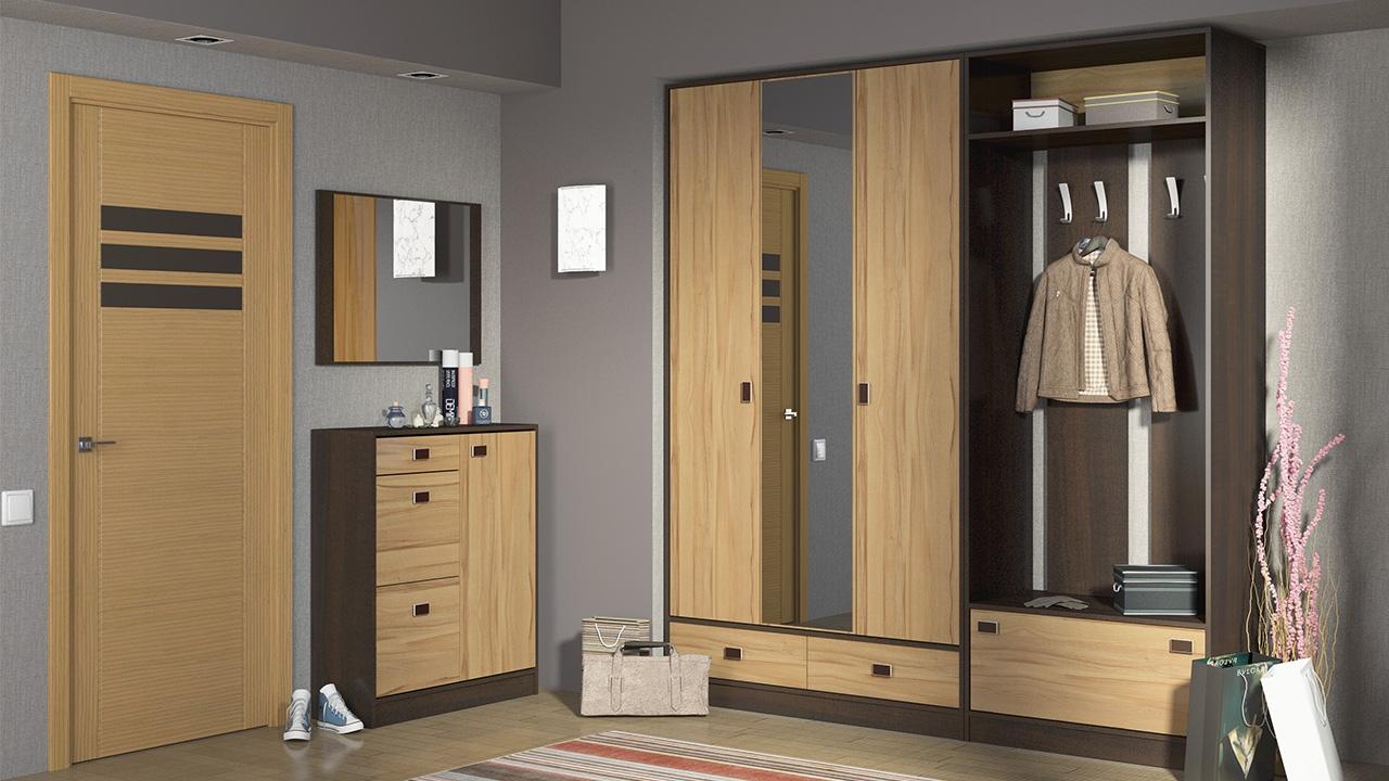 светлый дизайн прихожей комнаты с узким коридором