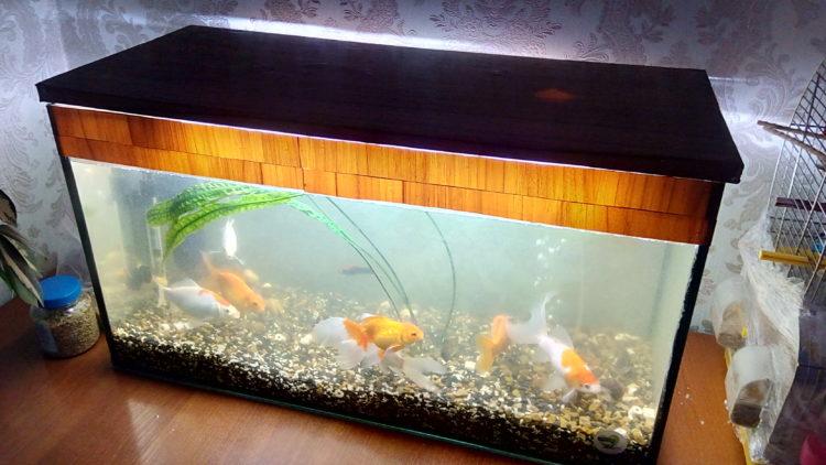 Декорирование ребер жесткости аквариума