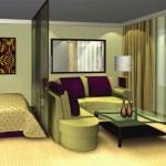 Зонирование гостиной и спальни в одной комнате
