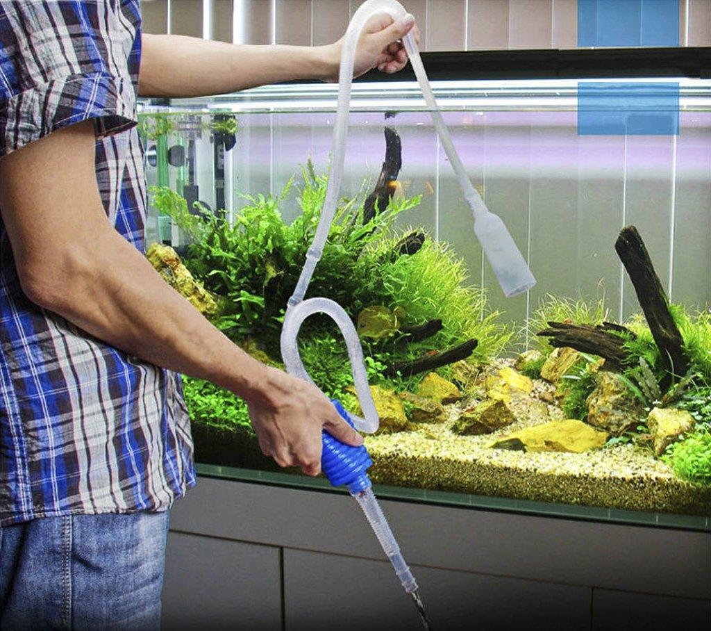 Как часто обновлять воду в аквариуме | Как часто менять воду в аквариуме