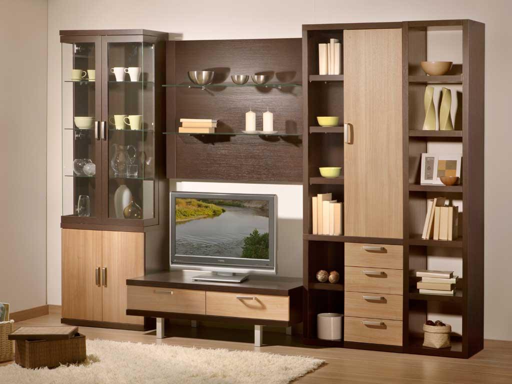 Распашные дверцы для корпусной мебели в гостиной