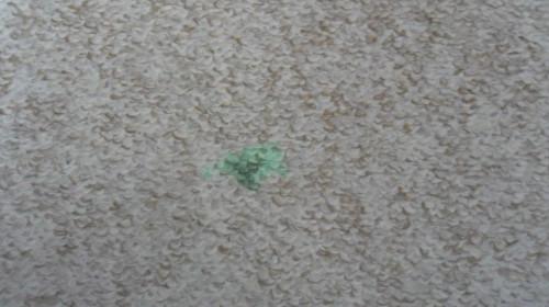 Отмываем зелёнку с ковра